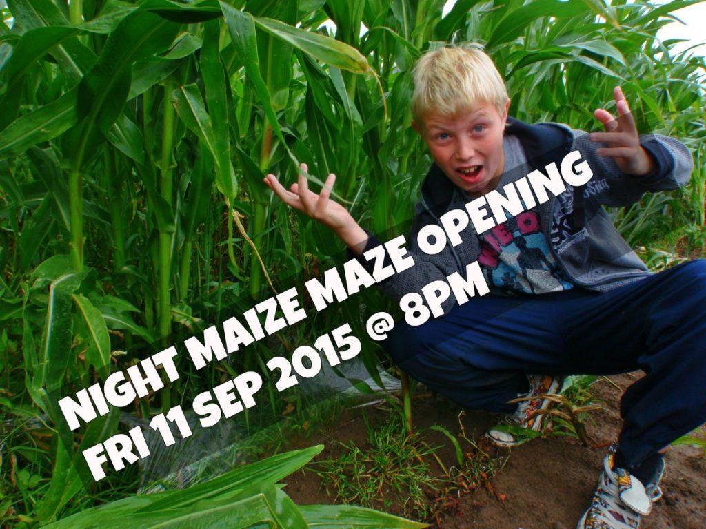 maize maze open now