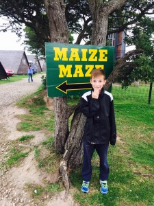 maize maze entry at sign